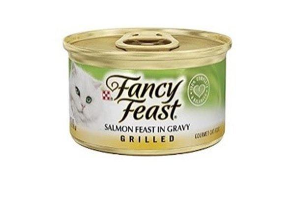 Fancy Feast Salmon in gravy grilled