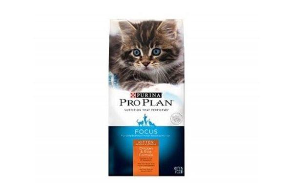proplan kitten formula pollo y arroz